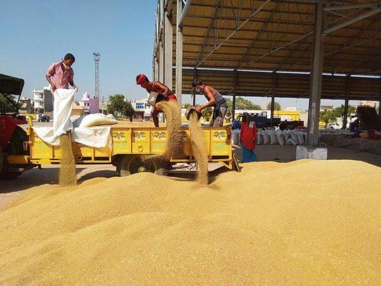 मध्यप्रदेश में 22 मार्च से होगी समर्थन मूल्य पर फसलों की खरीद