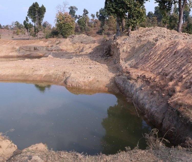 रोजगार दिलाने मनरेगा के तालाबों में भी होगा मछली पालन, योजना पर काम कर रही सरकार