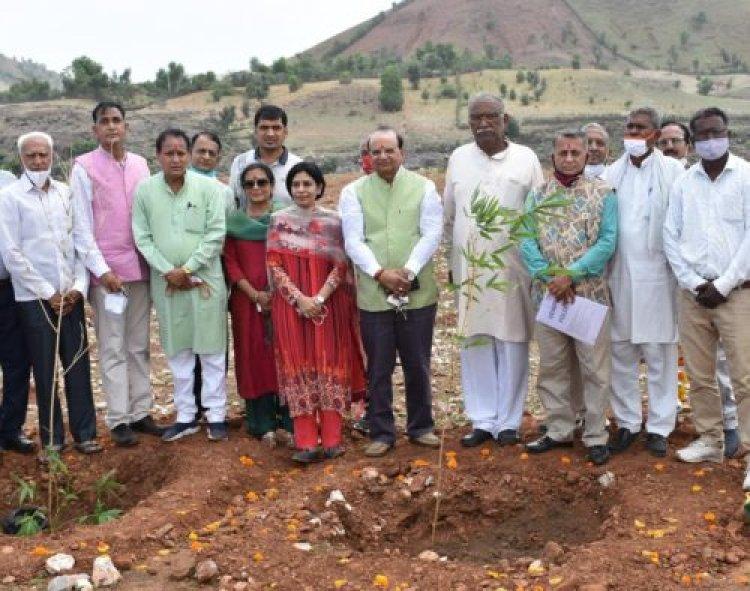 खादी और ग्रामोद्योग आयोग की अनूठी परियोजना 'प्रोजेक्ट बोल्ड' रोकेगी मरुस्थलीकरण